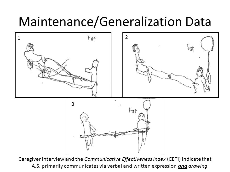 Maintenance/Generalization Data