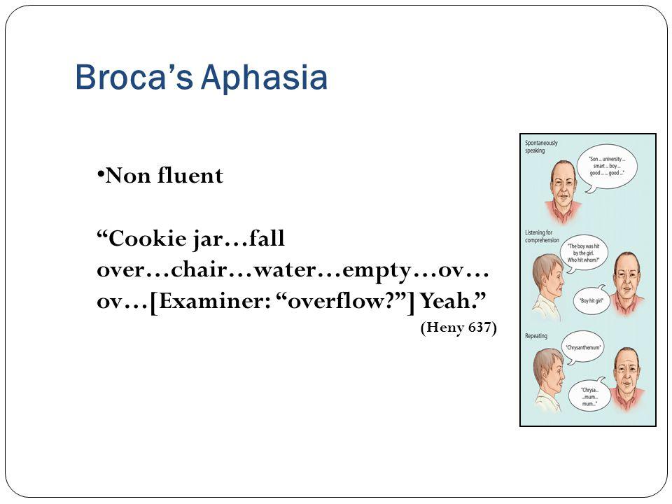 Broca's Aphasia Non fluent