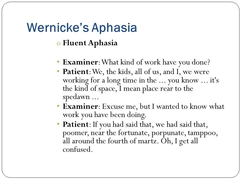 Wernicke's Aphasia Fluent Aphasia