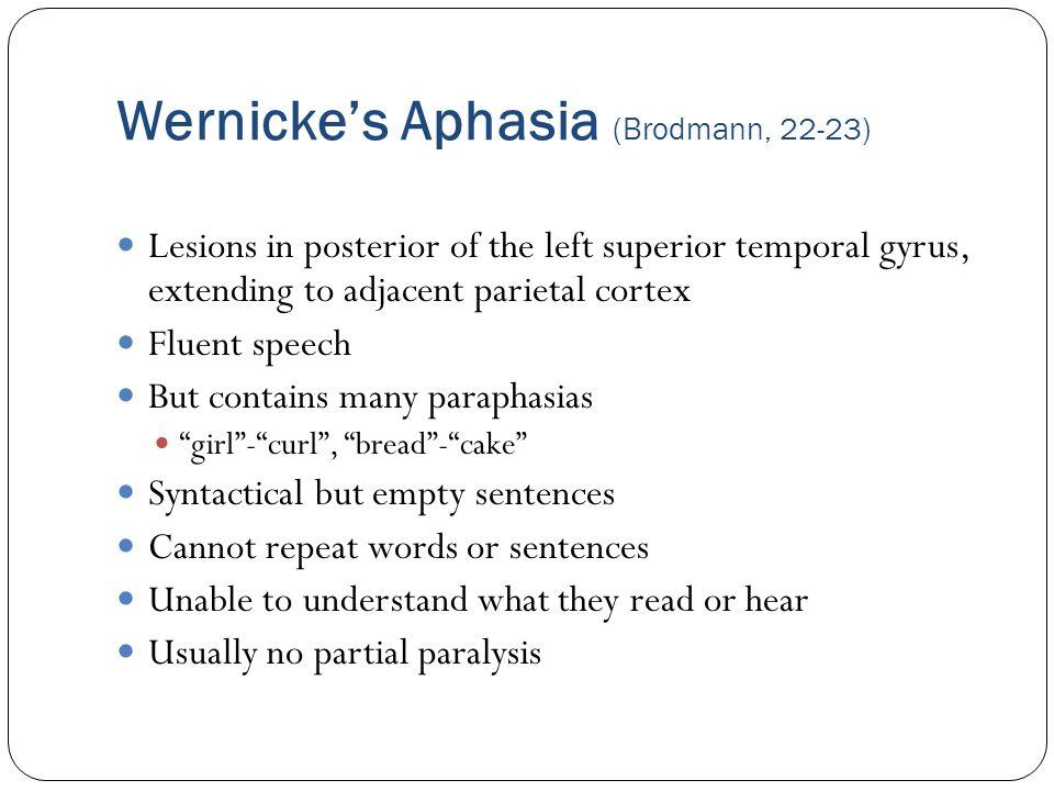 Wernicke's Aphasia (Brodmann, 22-23)