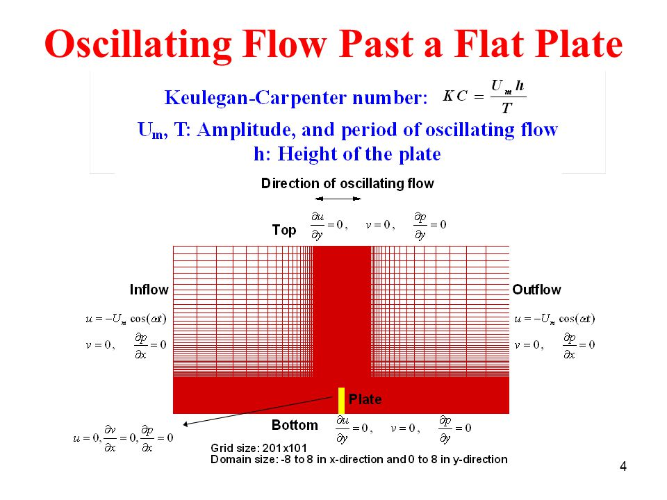 Oscillating Flow Past a Flat Plate