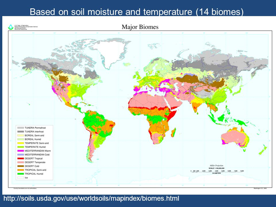 Based on soil moisture and temperature (14 biomes)