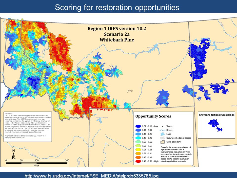 Scoring for restoration opportunities