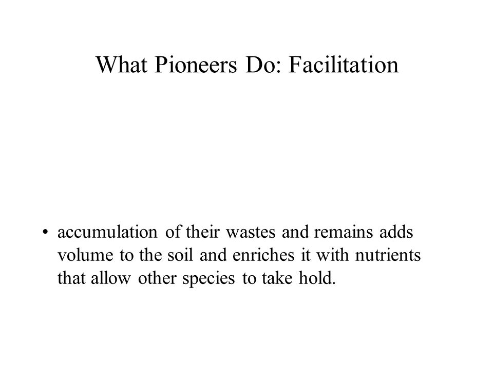 What Pioneers Do: Facilitation