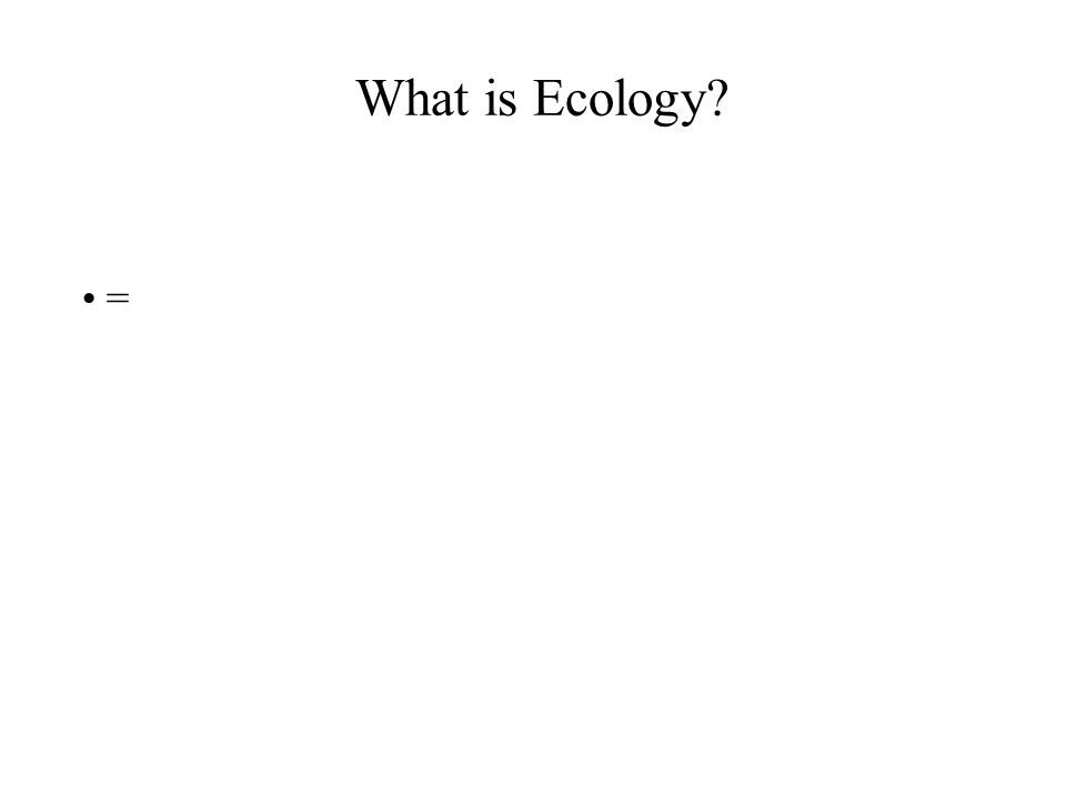 What is Ecology =
