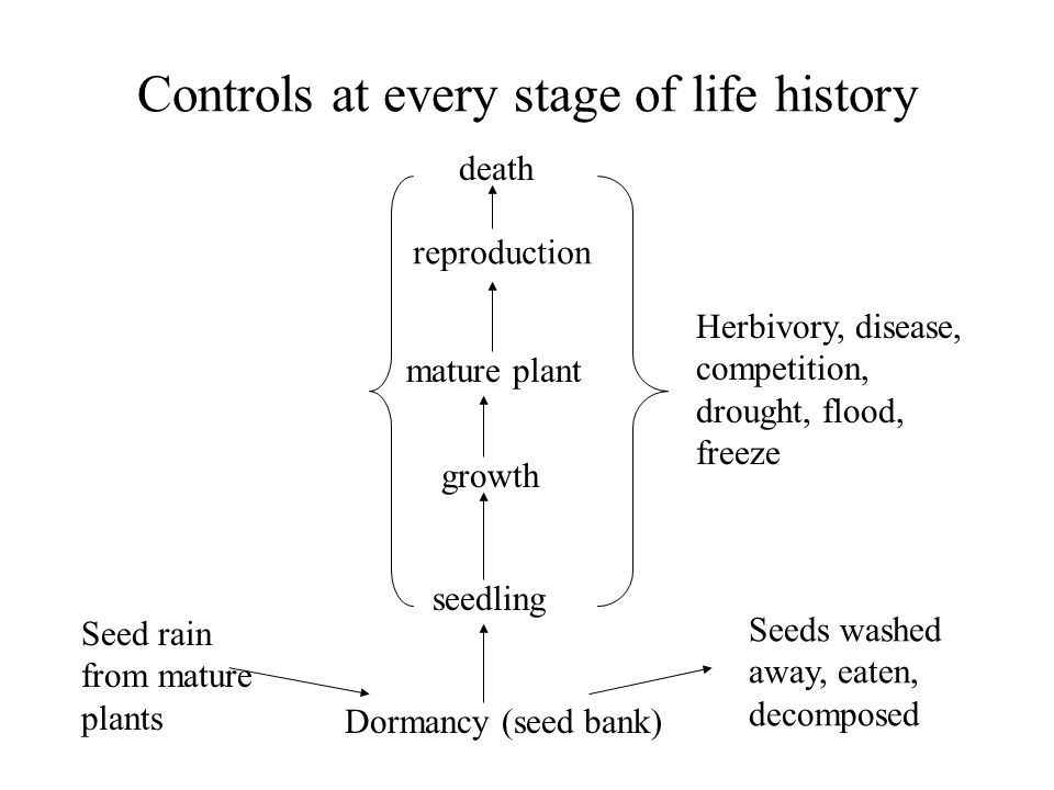 Controls at every stage of life history