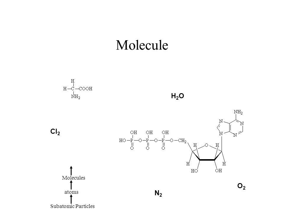 Molecule H2O Cl2 Molecules O2 atoms N2 Subatomic Particles