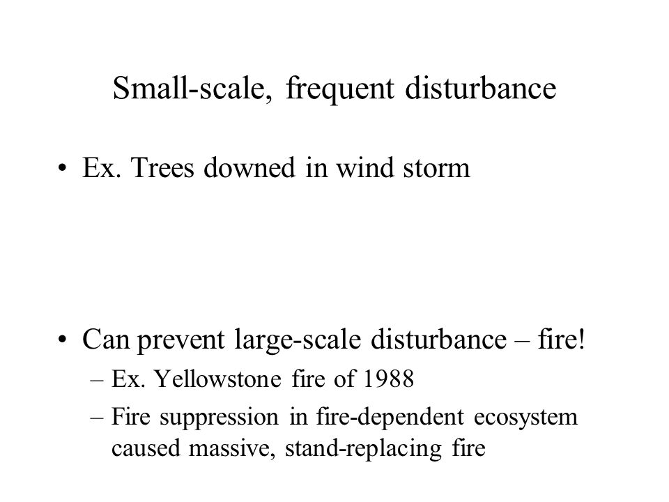 Small-scale, frequent disturbance