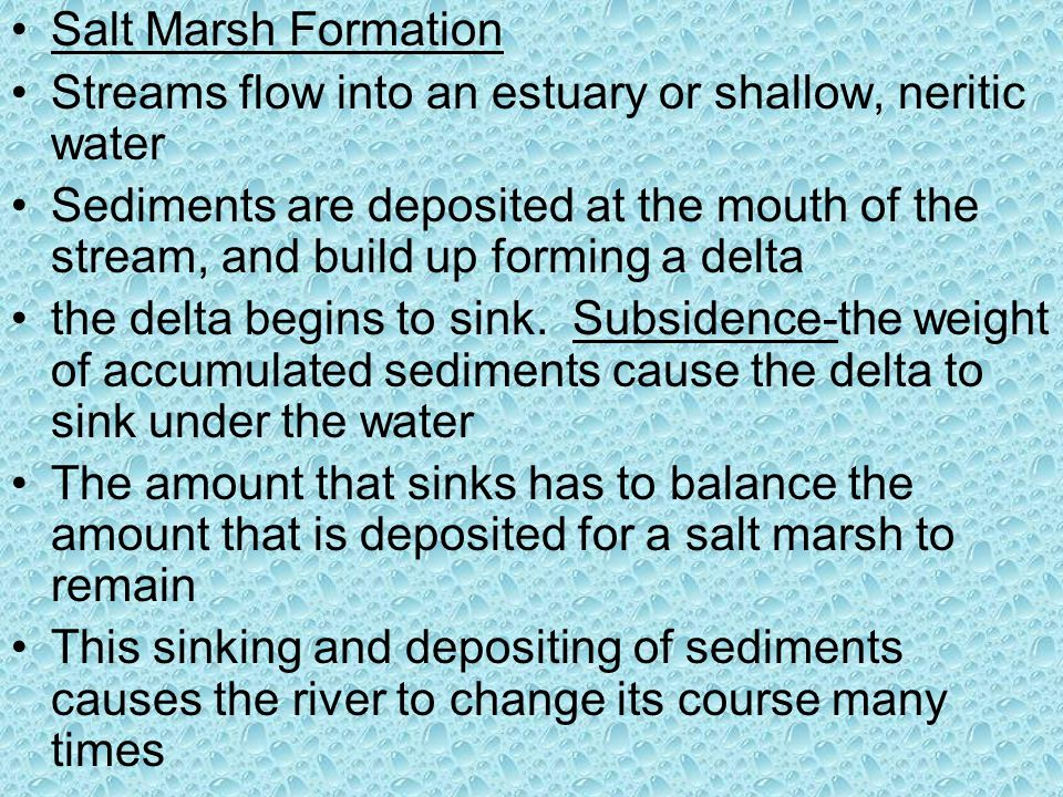 Salt Marsh Formation Streams flow into an estuary or shallow, neritic water.
