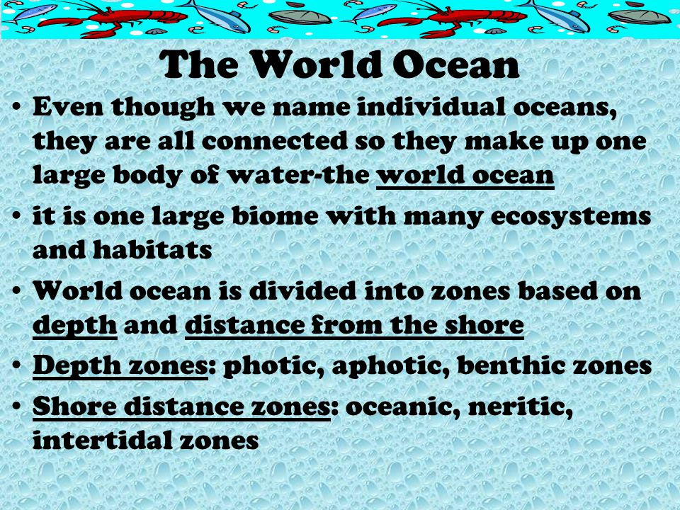 The World Ocean Even though we name individual oceans, they are all connected so they make up one large body of water-the world ocean.