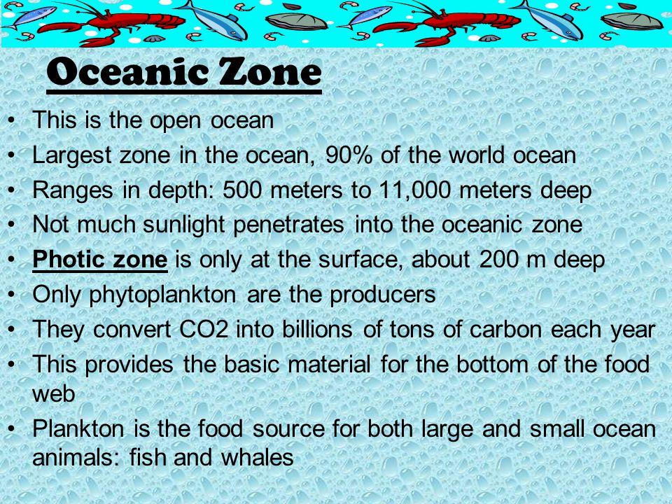 Oceanic Zone This is the open ocean
