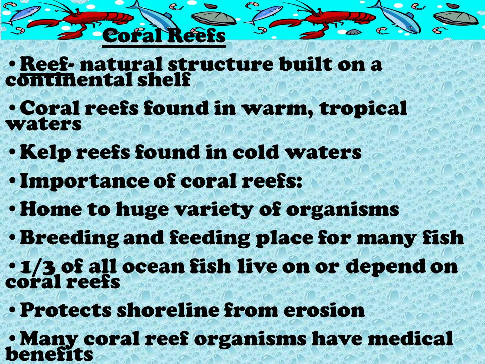 Coral Reefs Reef- natural structure built on a continental shelf. Coral reefs found in warm, tropical waters.