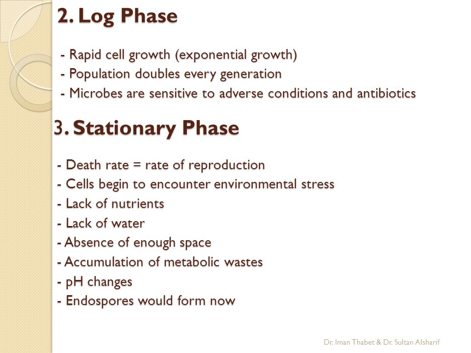 2. Log Phase 3. Stationary Phase