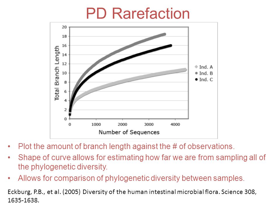 PD Rarefaction Plot the amount of branch length against the # of observations.