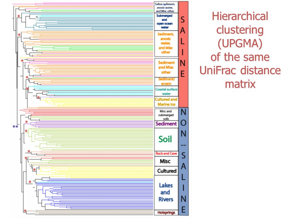 Hierarchical clustering (UPGMA)