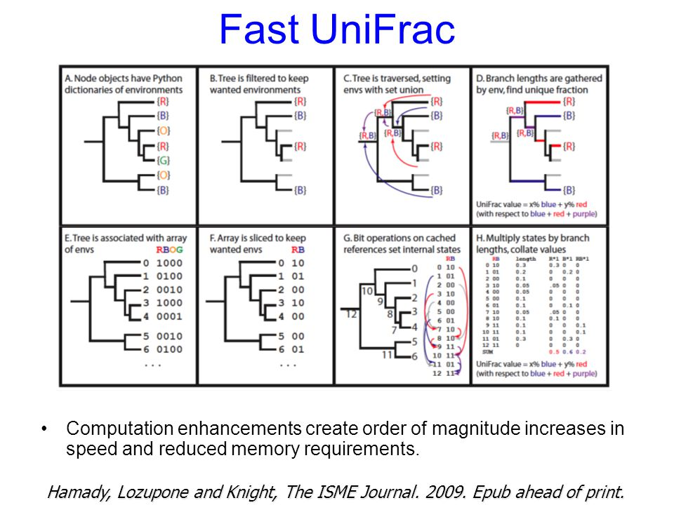 Fast UniFrac Computation enhancements create order of magnitude increases in speed and reduced memory requirements.