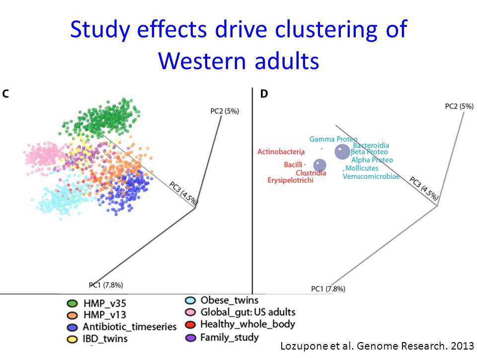 Study effects drive clustering of Western adults