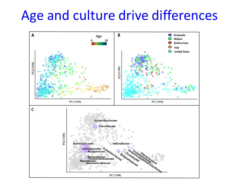 Age and culture drive differences