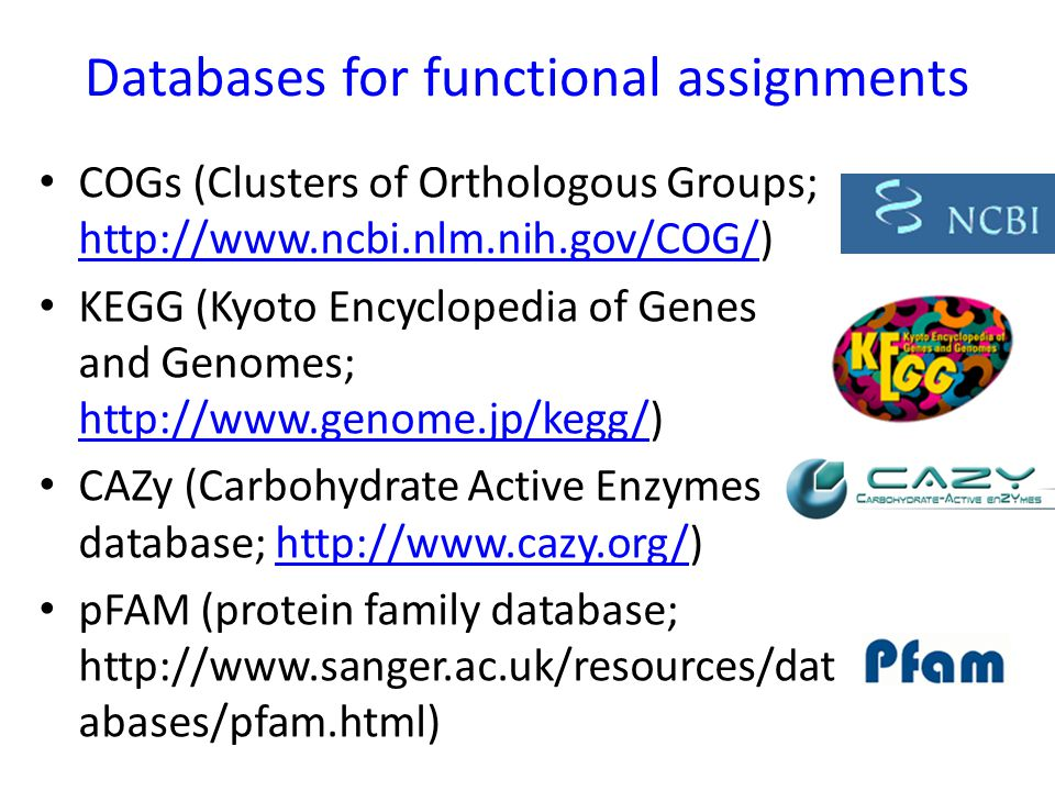 Databases for functional assignments