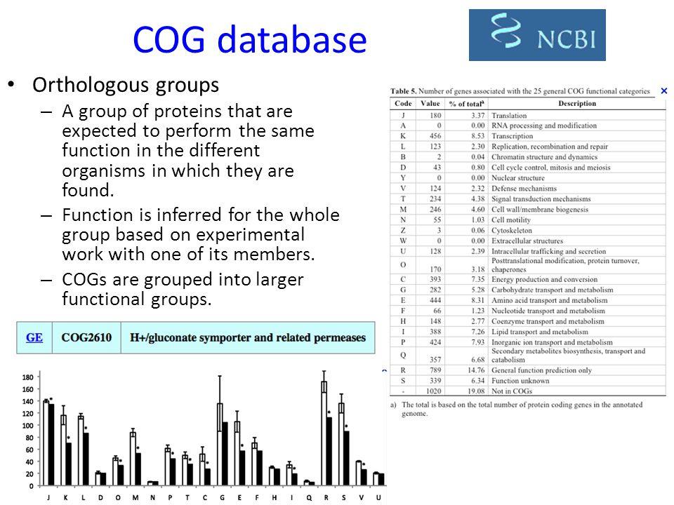 COG database Orthologous groups
