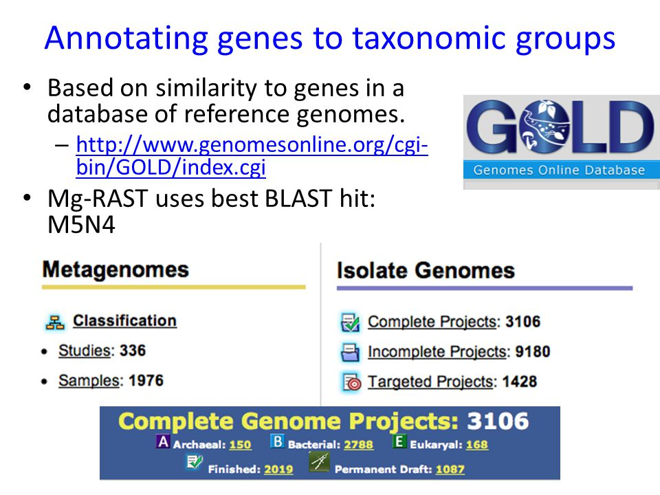 Annotating genes to taxonomic groups