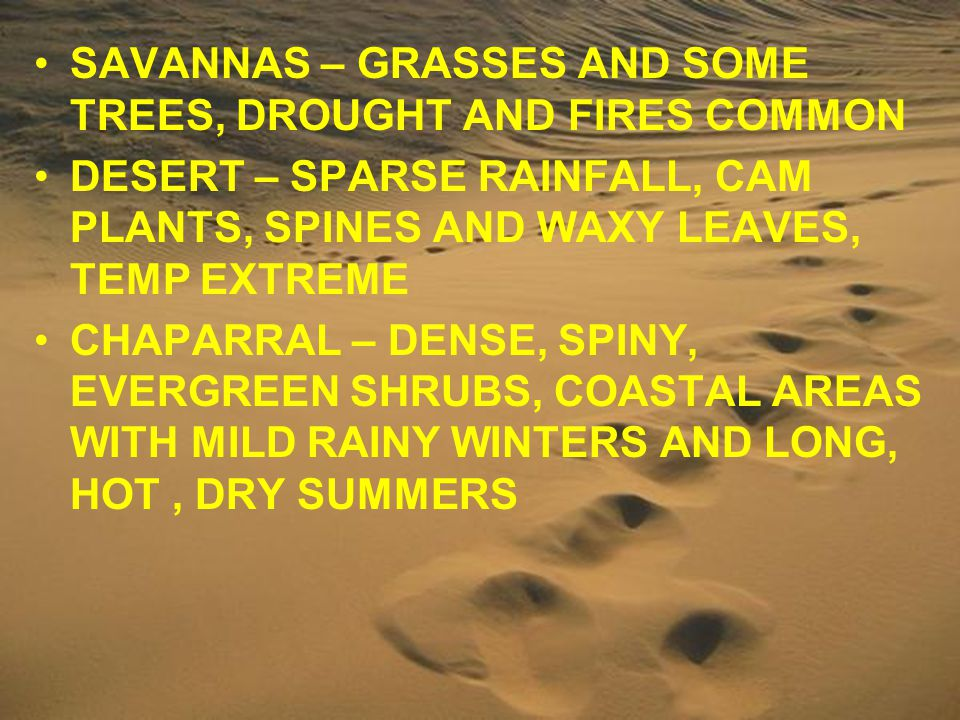 SAVANNAS – GRASSES AND SOME TREES, DROUGHT AND FIRES COMMON
