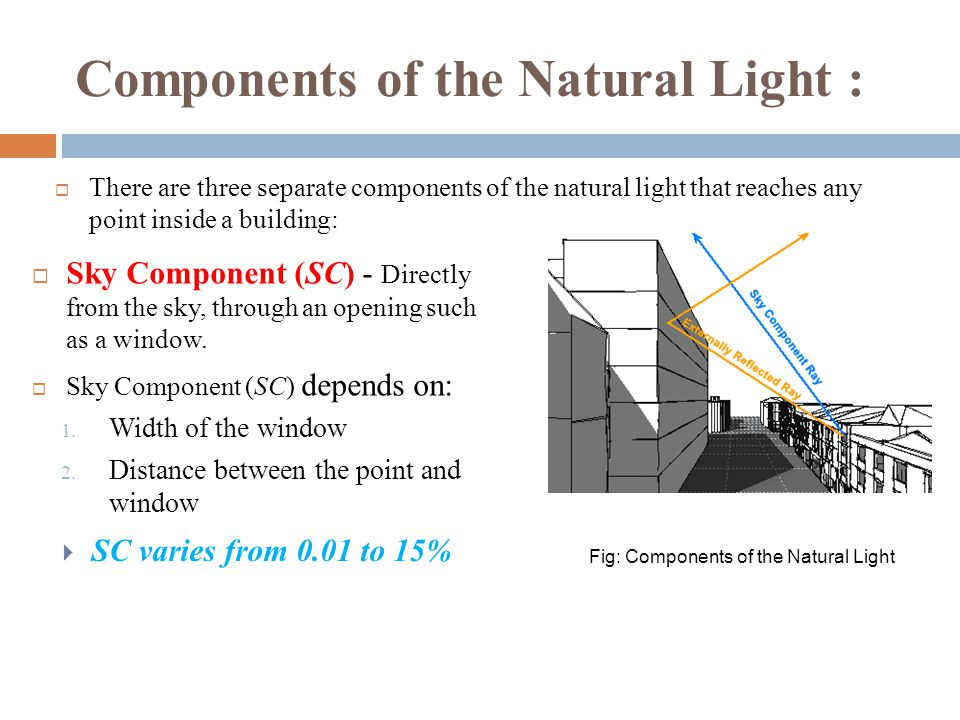 Components of the Natural Light :