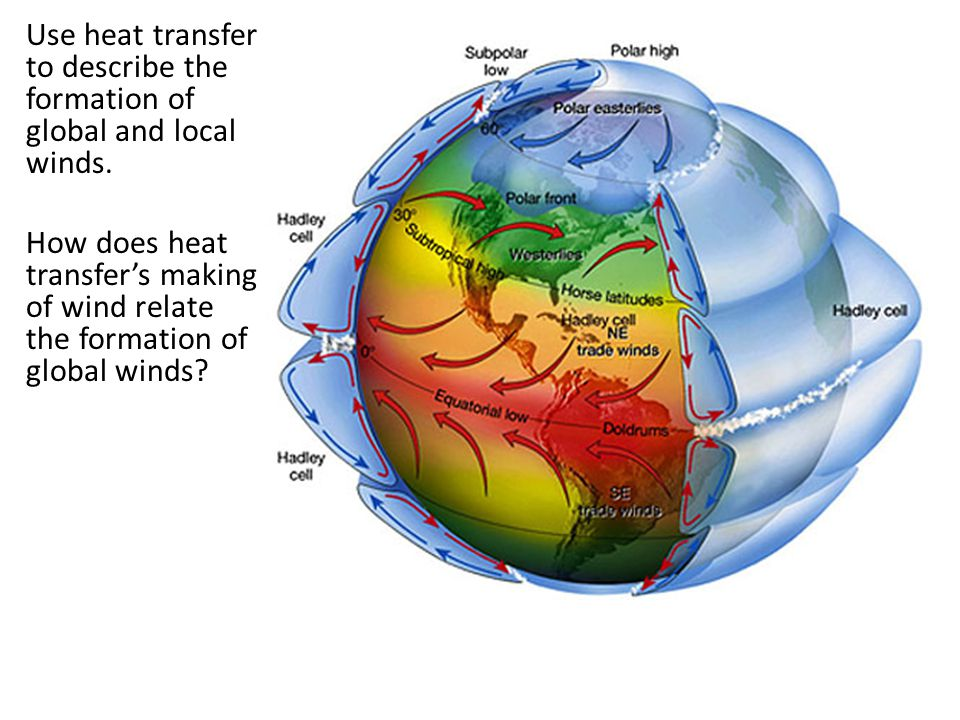 Use heat transfer to describe the formation of global and local winds.