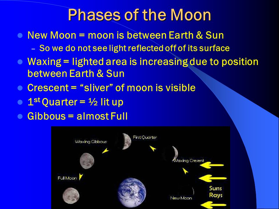 Phases of the Moon New Moon = moon is between Earth & Sun