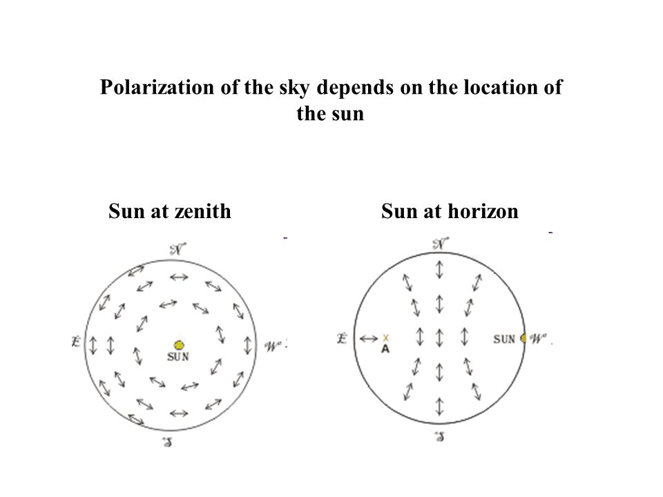 Polarization of the sky depends on the location of
