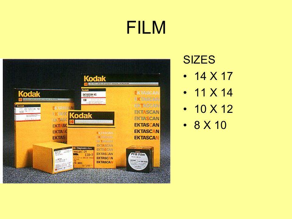FILM SIZES 14 X 17 11 X 14 10 X 12 8 X 10