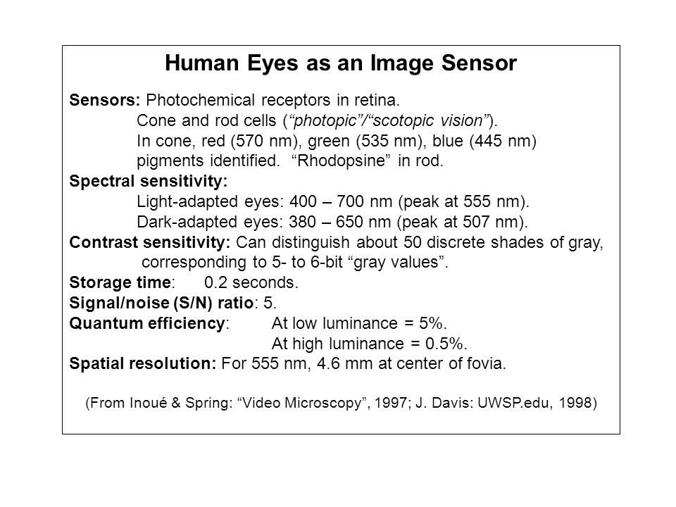 Human Eyes as an Image Sensor