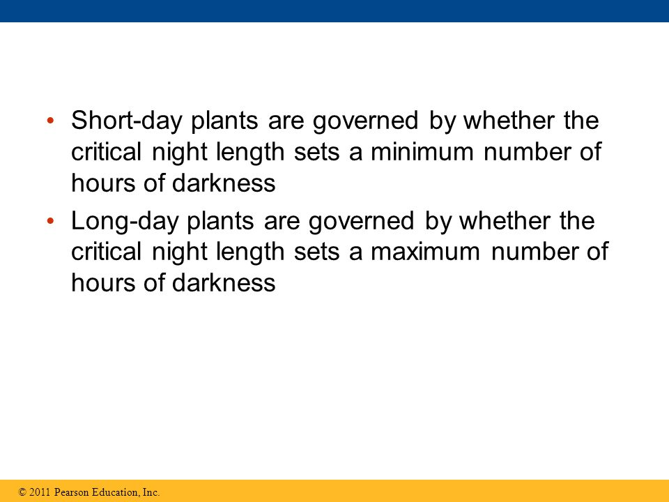 Short-day plants are governed by whether the critical night length sets a minimum number of hours of darkness