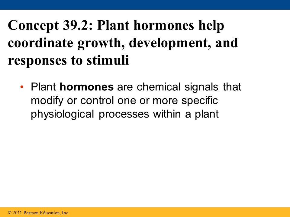 Concept 39.2: Plant hormones help coordinate growth, development, and responses to stimuli