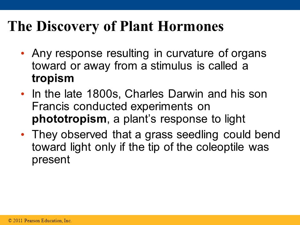 The Discovery of Plant Hormones