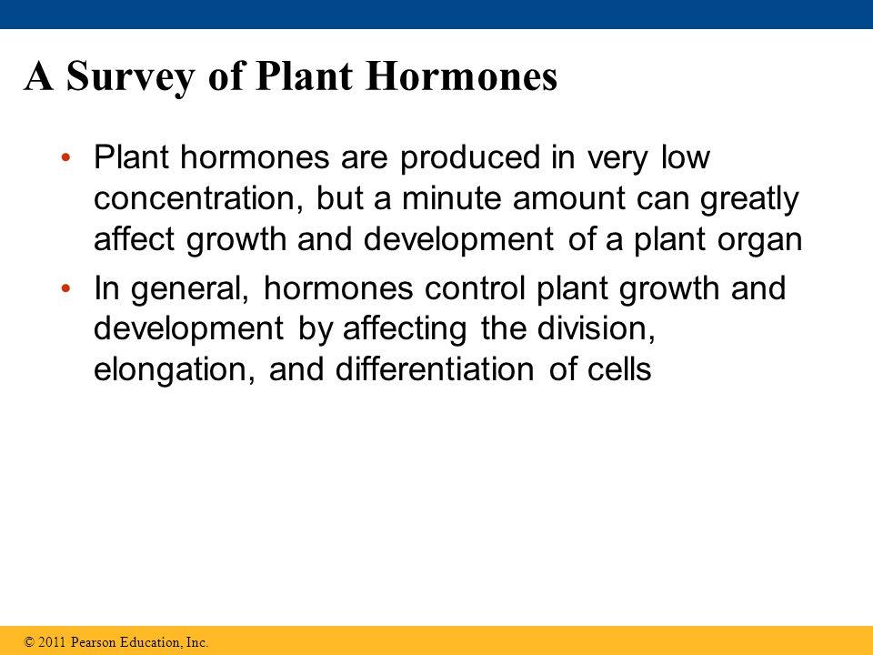 A Survey of Plant Hormones