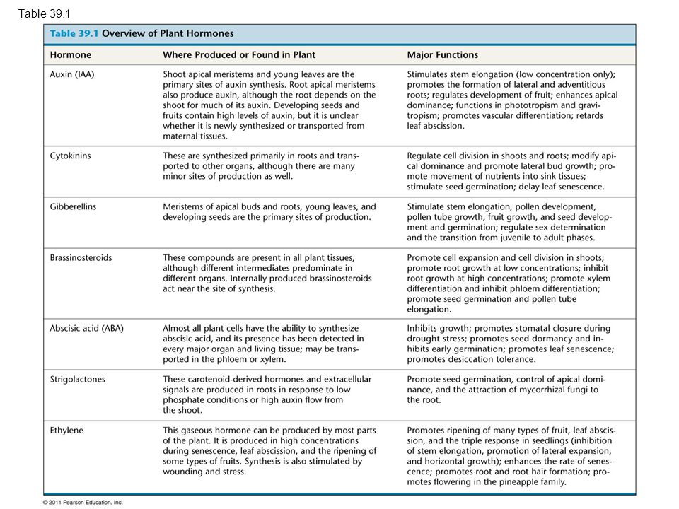 Table 39.1 Table 39.1 Overview of Plant Hormones