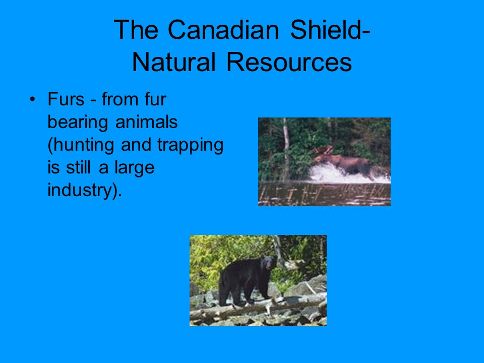 The Canadian Shield- Natural Resources