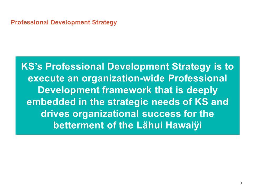 Professional Development Strategy