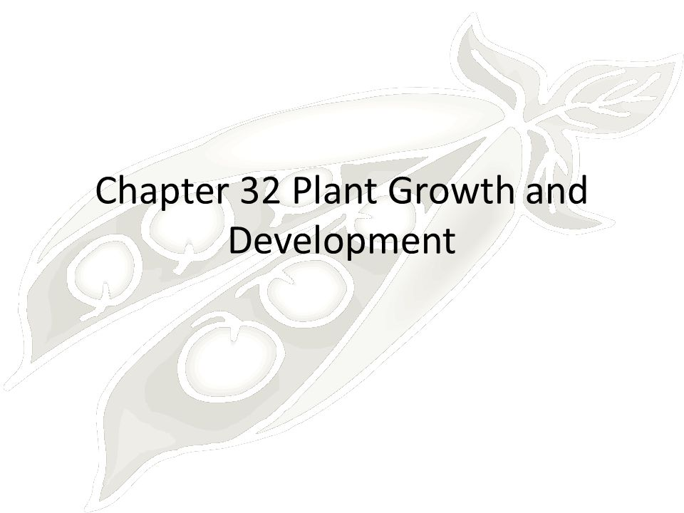 Chapter 32 Plant Growth and Development