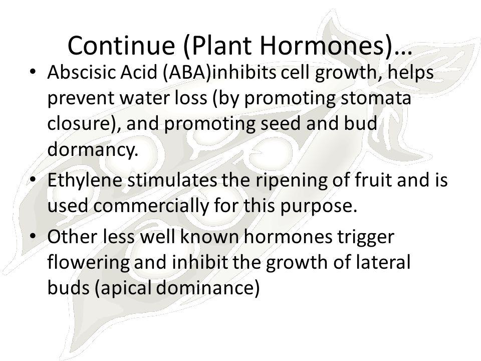 Continue (Plant Hormones)…