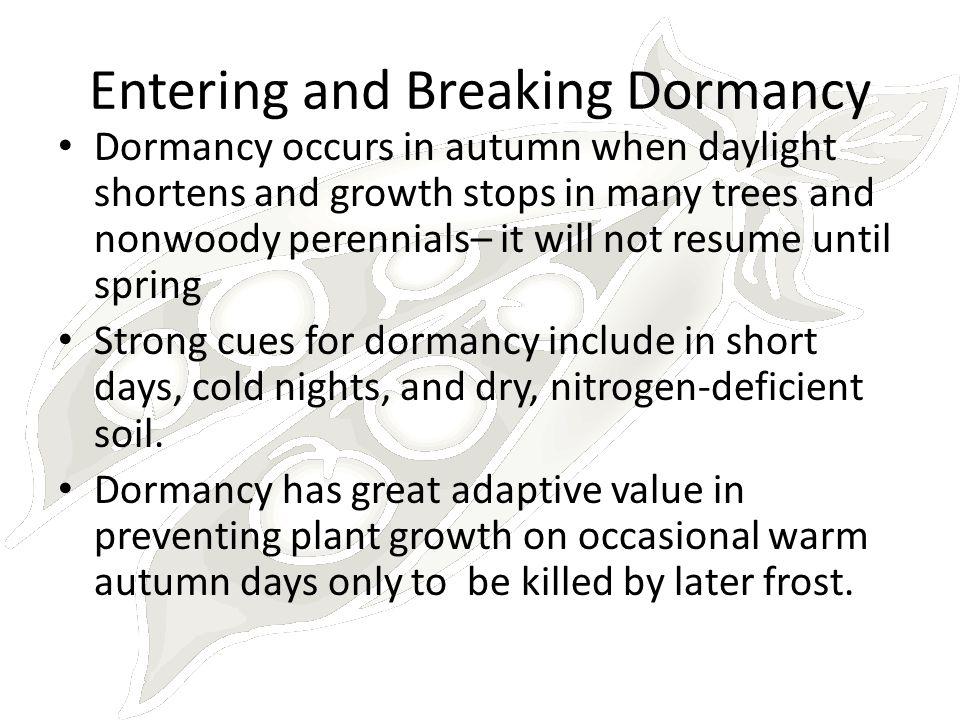 Entering and Breaking Dormancy