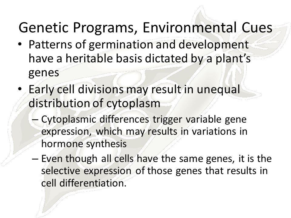 Genetic Programs, Environmental Cues