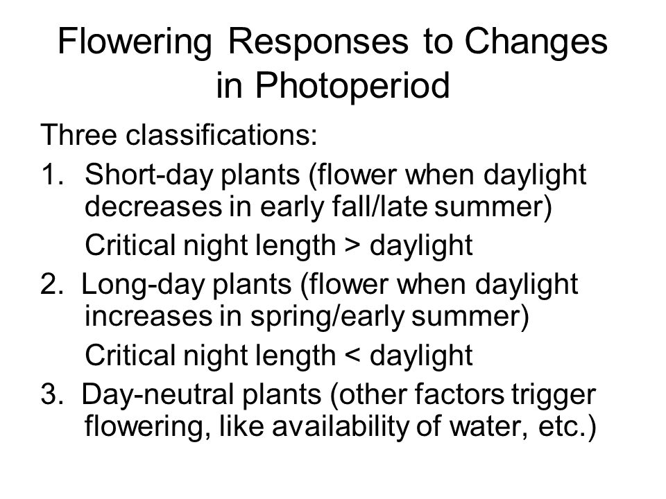 Flowering Responses to Changes in Photoperiod