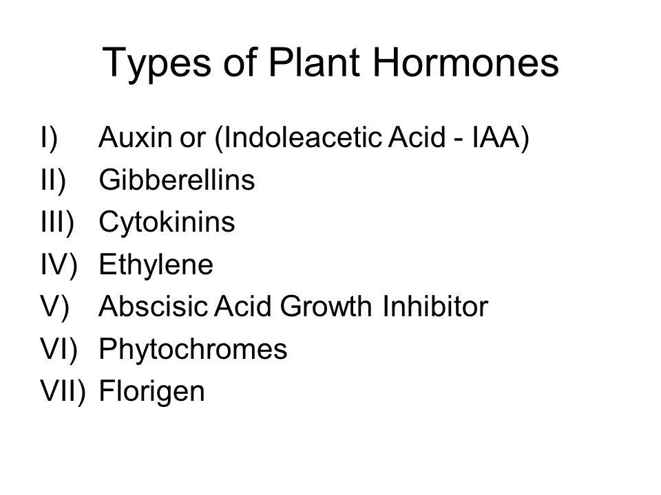 Types of Plant Hormones