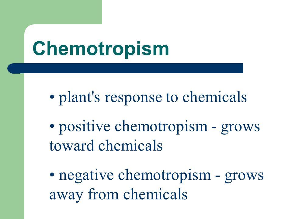 Chemotropism plant s response to chemicals
