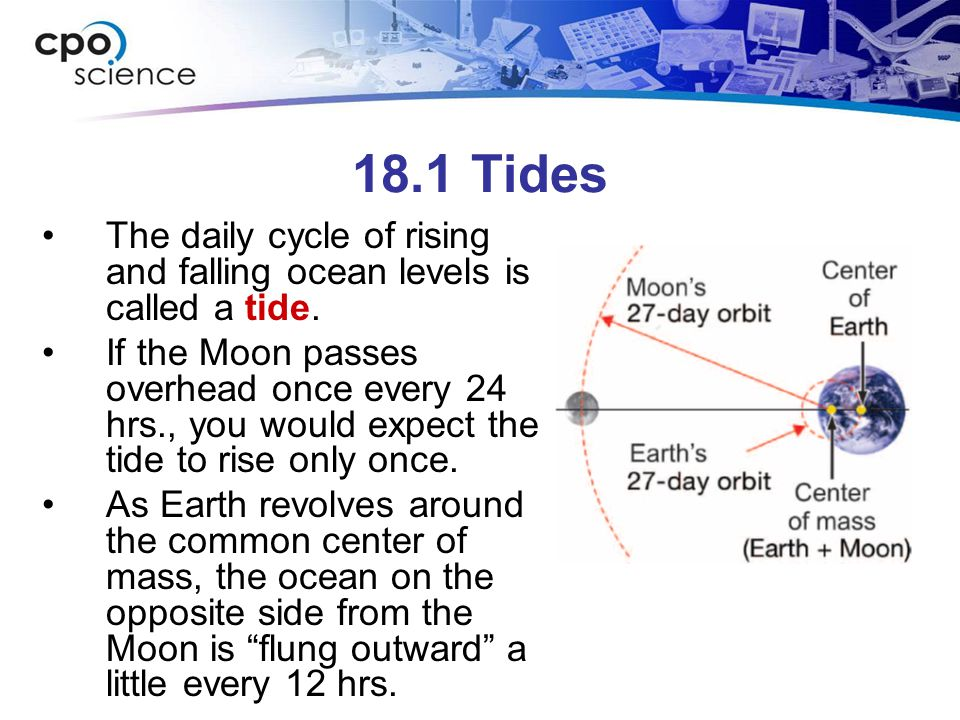 18.1 Tides The daily cycle of rising and falling ocean levels is called a tide.