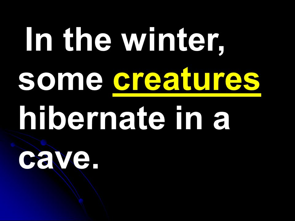 In the winter, some creatures hibernate in a cave.