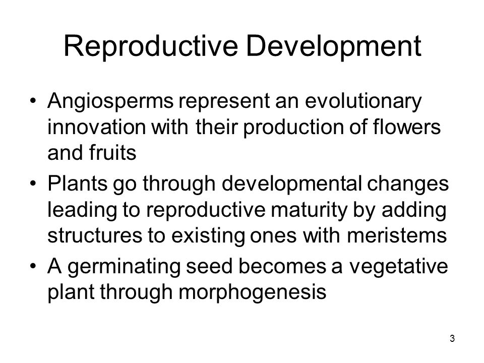 Reproductive Development