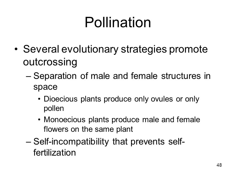 Pollination Several evolutionary strategies promote outcrossing
